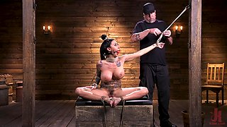Mature inked whore Lily Lane tied up and abused with toys